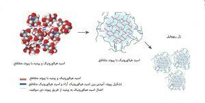 ساختار مولکولی مشبک ژل اسید هیالورونیک ریووفیل